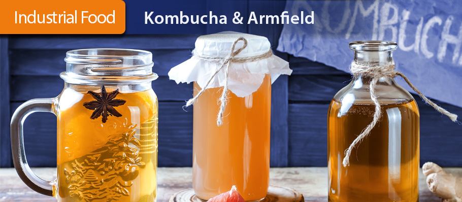 Kombucha and Armfield